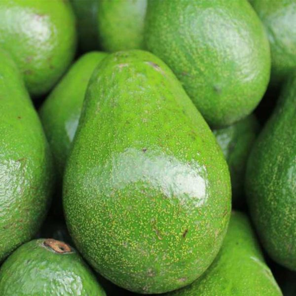 Aguacate Selecto (1 ud)